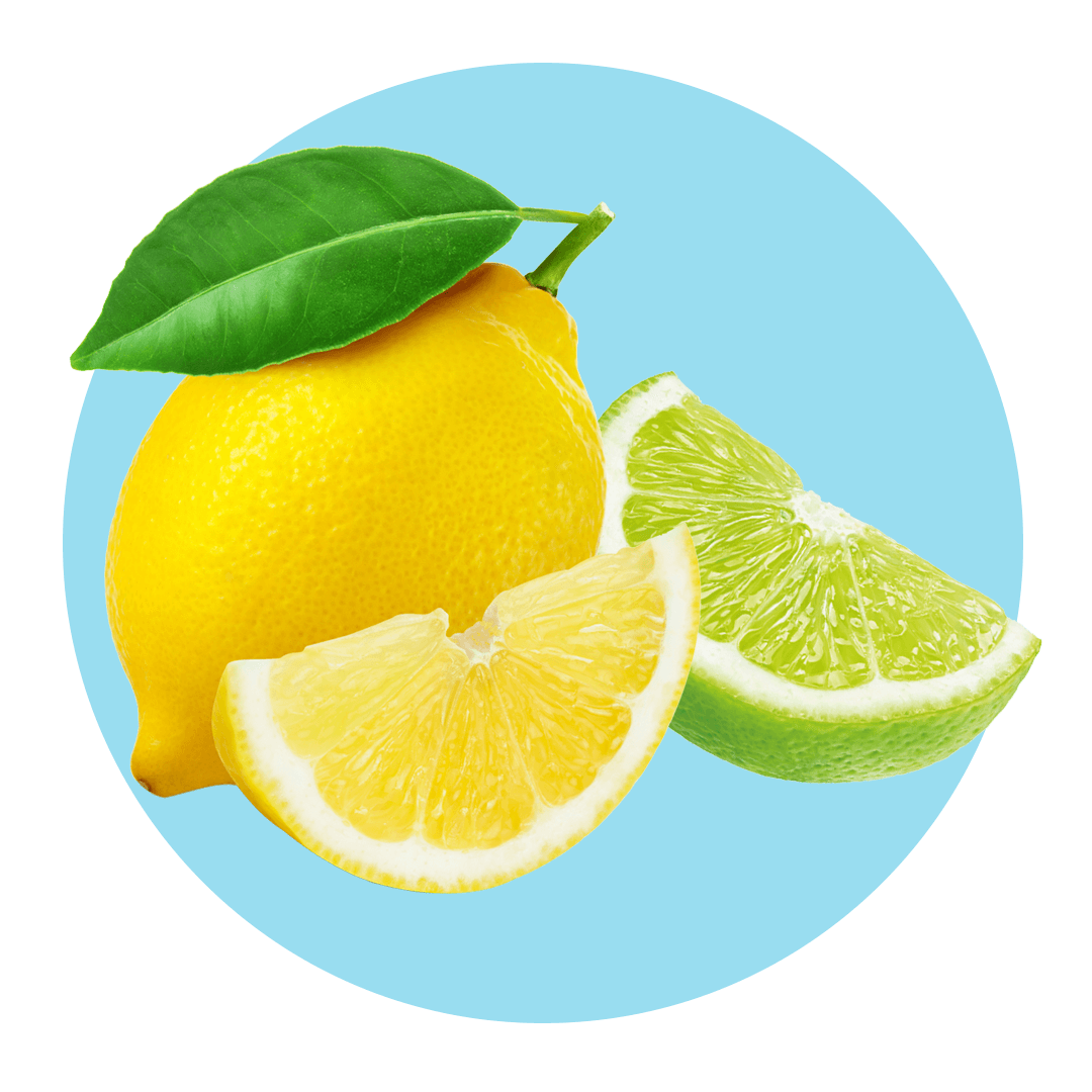 Sliced lemon and lime citrus fruits